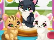 Juego Kitty Care 2